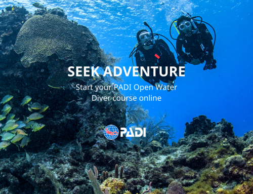 PADI eLearning Open Water Course