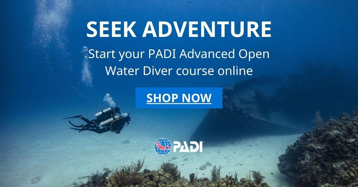 Sailing Club Divers Nha Trang PADI Scuba Diving Center ONLINE Learning