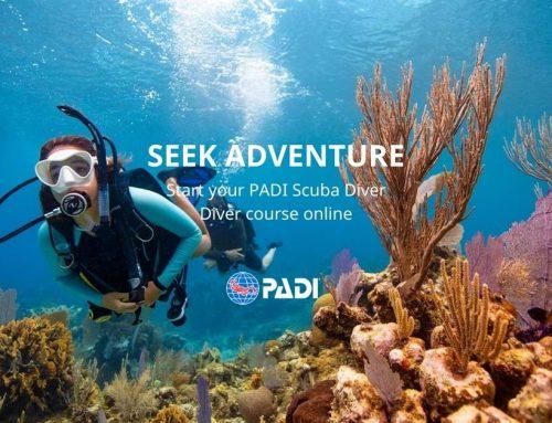 PADI eLearning Scuba Diver Course
